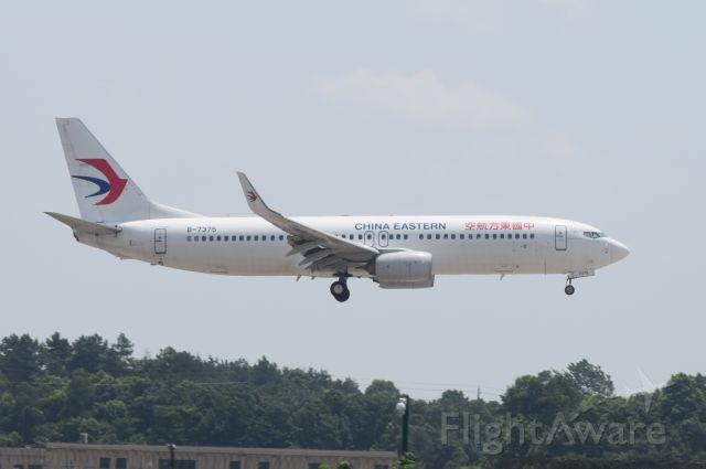 Boeing 737-800 (B-7375)