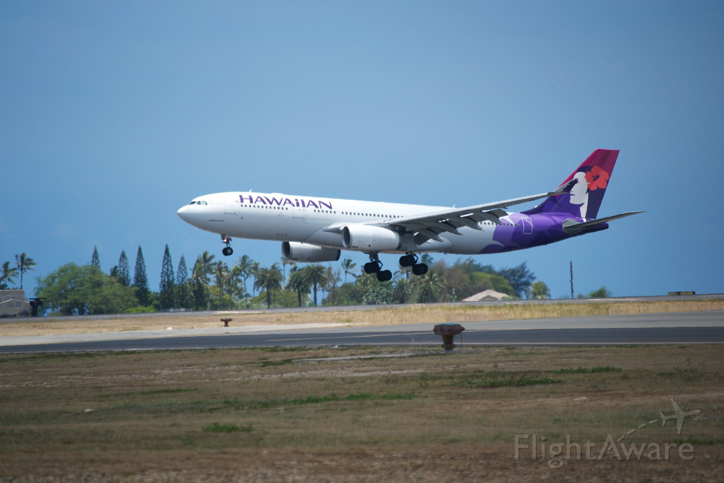Airbus A330-200 — - Hawaiian Airbus A330 just about to touch down in Honolulu.