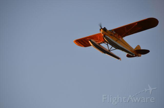 Piper NE Cub — - Jack Brown Sea Plane Base