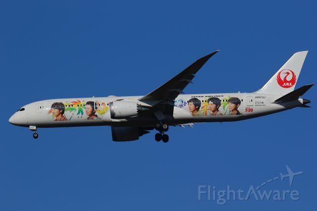 Boeing 787-9 Dreamliner (JA873J) - ARASHI ver
