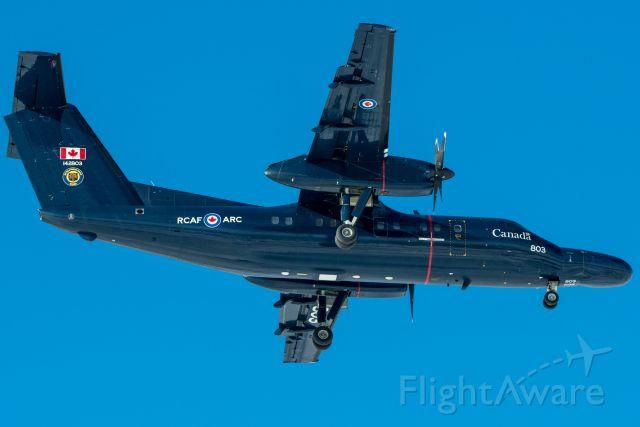 """de Havilland Dash 8-100 (14-2803) - A CT142 """"Gonzo"""" arrives at CYYC Rwy 35R."""