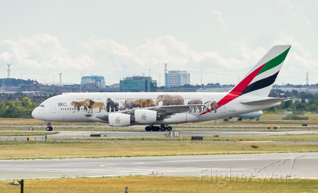 """Airbus A380-800 (A6-EOM) - Long distance shot of the """"United for Wildlife"""" livery on this Emirates A380"""