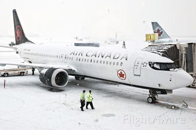 Boeing 737 MAX 8 (C-FSCY)