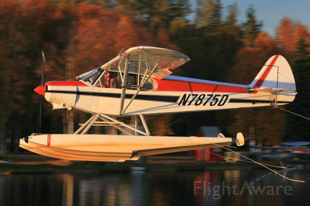 Piper L-21 Super Cub (N7875D)