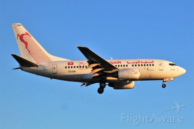 BOEING 737-600 (TS-ION)
