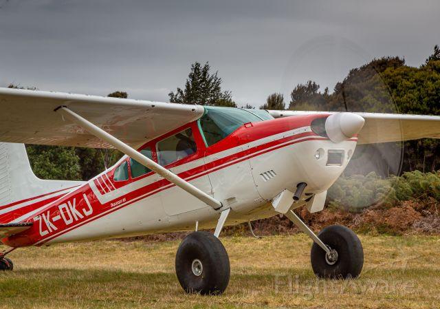 Cessna Skywagon (ZK-DKJ) - Te Anau Downs Airstrip, New Zealand.