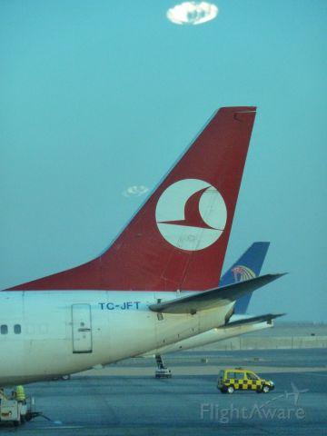 Boeing 737-800 (TC-JFT)