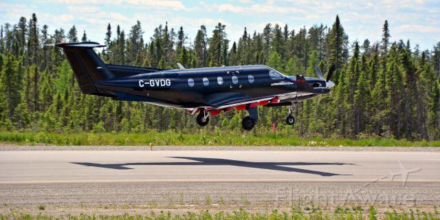Pilatus PC-12 (NDL321) - Needle 321 (NDL321) // C-GVSG