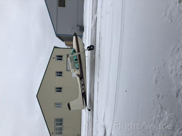Cessna Skywagon 180 (N3171D)