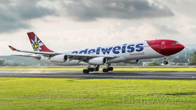 Airbus A340-300 (HB-JMG) - Edelweiss arriving by runway 07