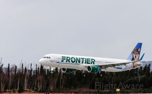 Airbus A321 (N704FR) - Virgina the Wolf landing runway 26 07Nov2015 from Hamburg to Tampa.