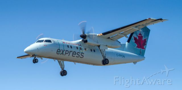 de Havilland Dash 8-100 (C-FPON) - Captain is looking right at me!
