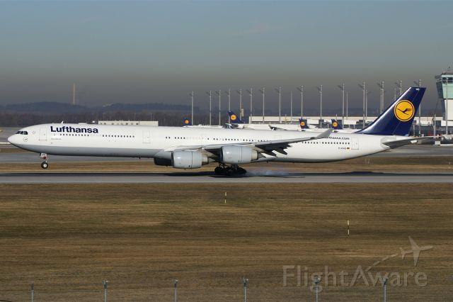 D-AIHO — - Airbus A340-642  Lufthansa  EDDM Munich Airport Germany  17.January 2011