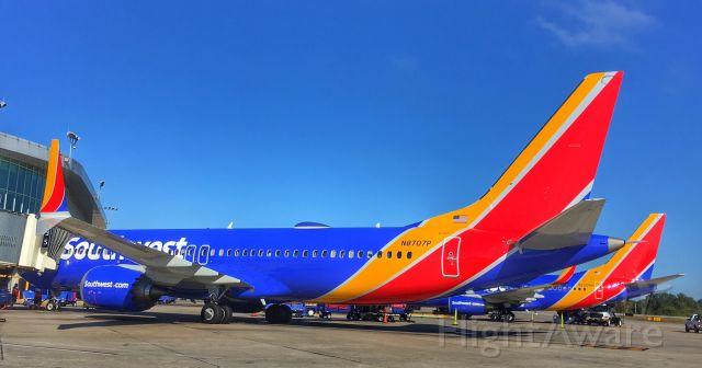 Boeing 737 MAX 8 (N8707P) - Southwest 737 MAX.
