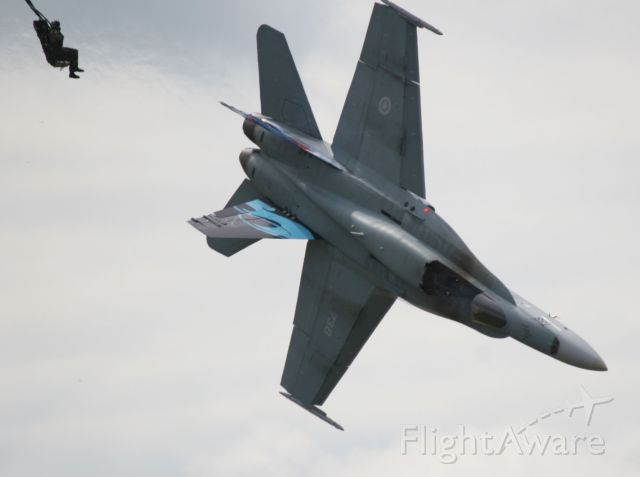 McDonnell Douglas FA-18 Hornet (18-8738) - Brian watches as his stricken hornet lives its last moment