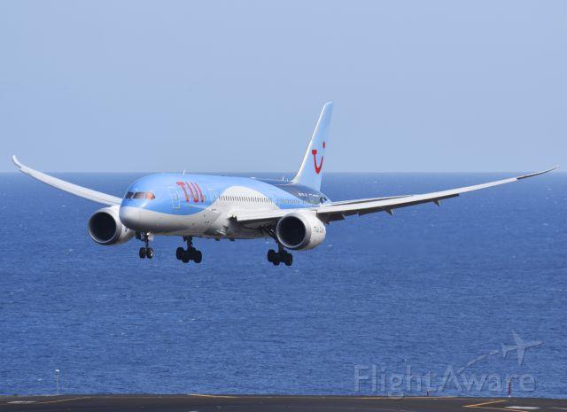 Boeing 787-8 (PH-TFL)