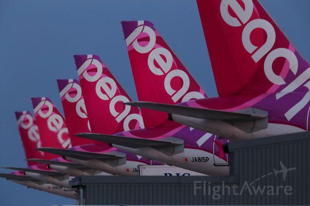 Airbus A320 (JA815P) - The align of Peach wings in KIX.