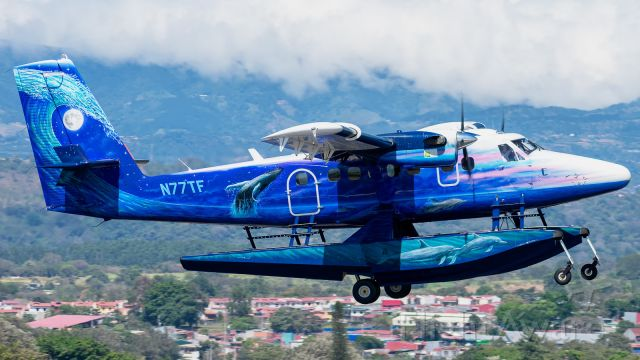 De Havilland Canada Twin Otter (N77TF)