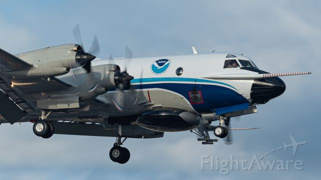 Lockheed P-3 Orion (N42RF) - NOAA43 arriving for some fuel and rest before heading onto Alaska