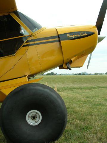 Piper L-21 Super Cub —