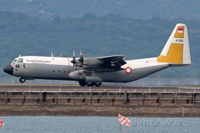 Lockheed C-130 Hercules (A1318)