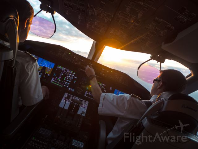 Boeing Dreamliner (Srs.8) — - Turning to intercept the localizer on a summer evening. What a gorgeous flight deck!