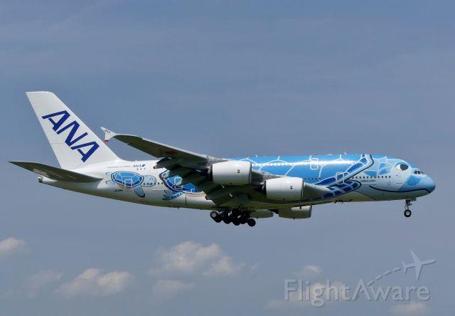 Airbus A380-800 (JA381A) - Tokyo-Narita(NRT) 2019/06/06