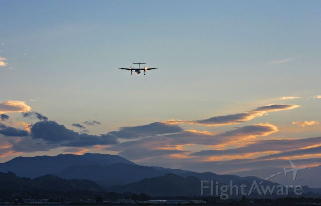 de Havilland Dash 8-300 (ZK-NEG) - Air New Zealand Q-300 on short final landing from the south at Nelson. View from embankment at southern end of the airport.