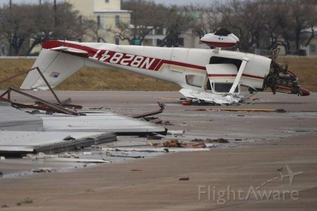 Cessna 175 Skylark (N8284T)
