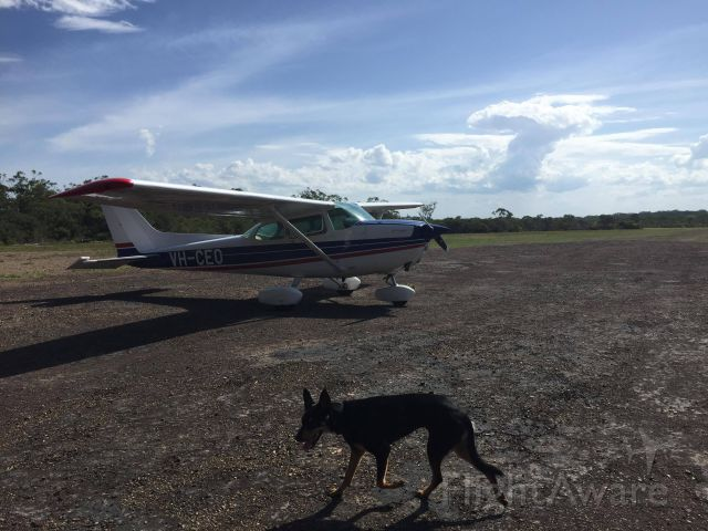Cessna Skyhawk (VH-CEO) - Landed at Wallis Island greeted by this guy.