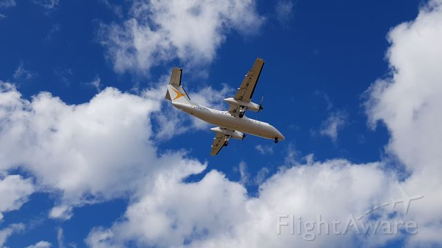 — — - PAL Airlines flight 927 arriving from St Johns
