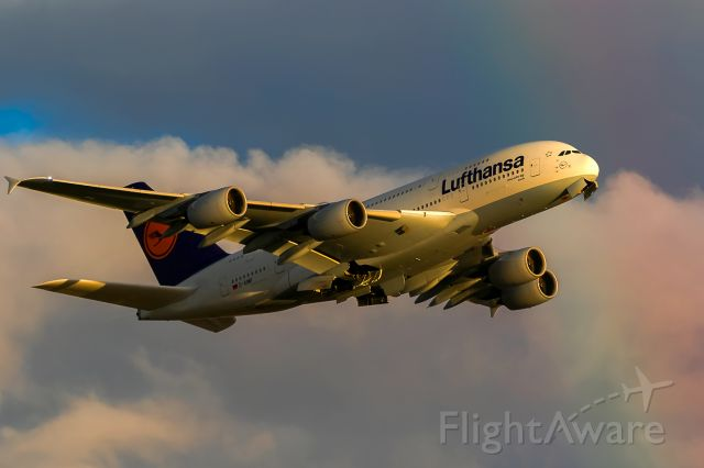 Airbus A380-800 (D-AIMF) - rainbownose