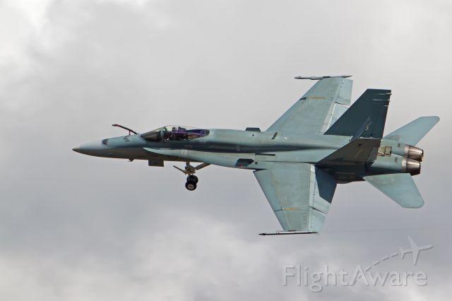 McDonnell Douglas FA-18 Hornet (A2146)