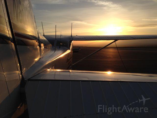 Cessna Skyhawk (N80300)