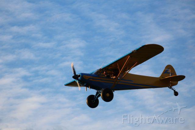 Piper L-21 Super Cub (N218MA)