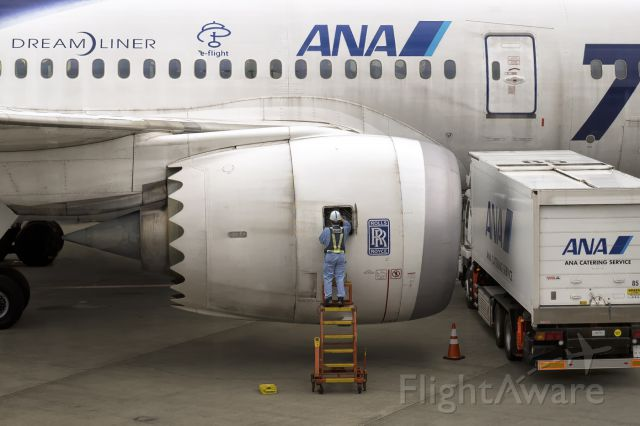 Boeing 787-8 (JA802A) - 6th April, 2015