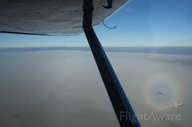 Cessna 170 (N58D) - Cruise Altitiude, shadow of a/c lower right