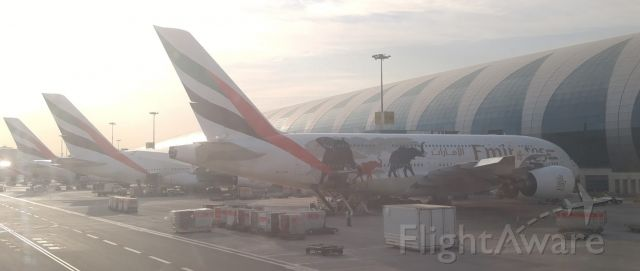 Airbus A380-800 (A6-EER) - Panoramic shot during pushback from Emirates