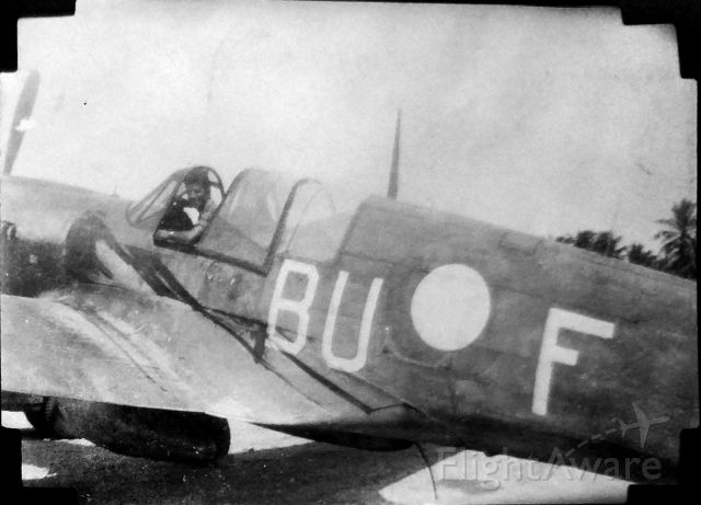 CURTISS Warhawk (BUF) - My Grandpa in a P-40 Kittyhawk in New Guinea 1944 or 45. Disclaimer: I obviously didnt take this photo nor do I know who did.