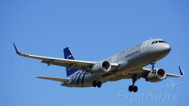 Airbus A320 (F-HEPI) - landing @ Brest Bretagne Airport (Skyteam livery)