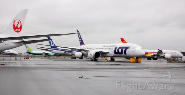 Boeing 787-8 (SP-LRD) - Grounded Boeing 787s at Paine Field February 14, 2013.