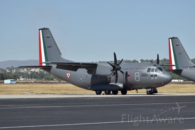 ALENIA Spartan (C-27J) (FAM3043) - C27J took in Santa Lucia AB, whit new camuflaje.
