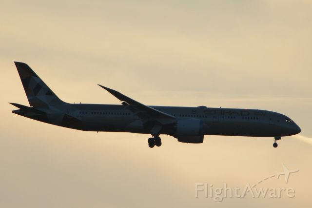 Boeing 787-9 Dreamliner (A6-BLA) - Silhouette against the evening sky during landing on RWY 1C