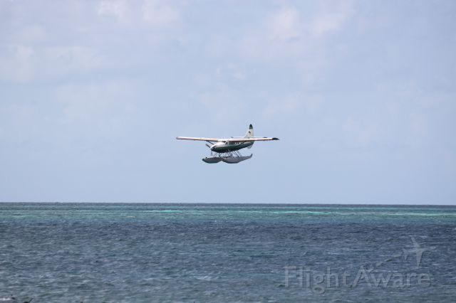 Beechcraft 35 Bonanza (N435B)