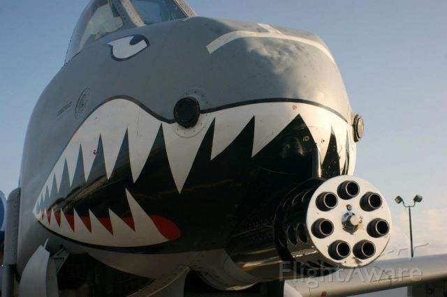 Fairchild-Republic Thunderbolt 2 — - The business end of an A10 at the 2011 Great Georgia Airshow