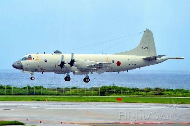 Lockheed P-3 Orion (N5091) - Landing