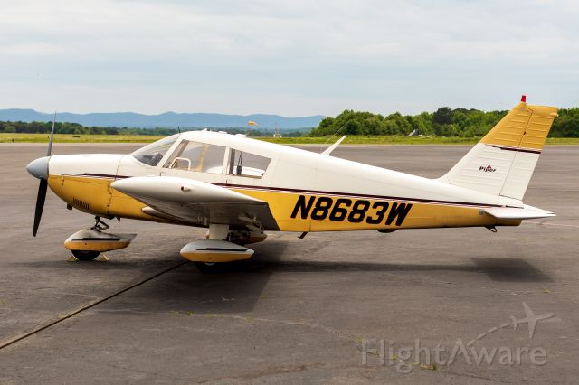 Piper Dakota / Pathfinder (N8683W)
