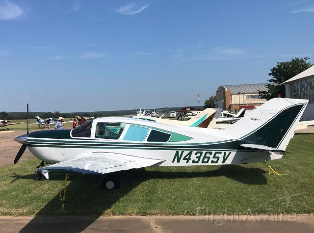 BELLANCA Viking (N4365V) - September 14, 2019 Bartlesville Municipal Airport OK - Bellanca Fly-in