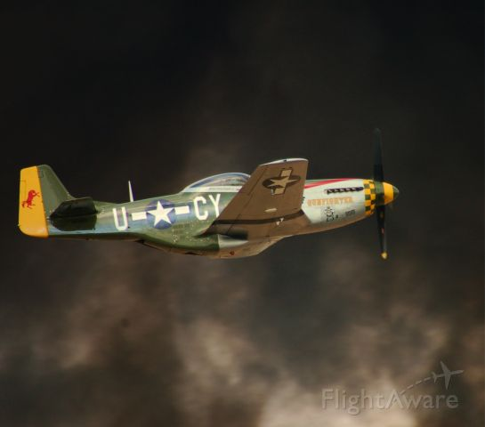 North American P-51 Mustang (CAF)
