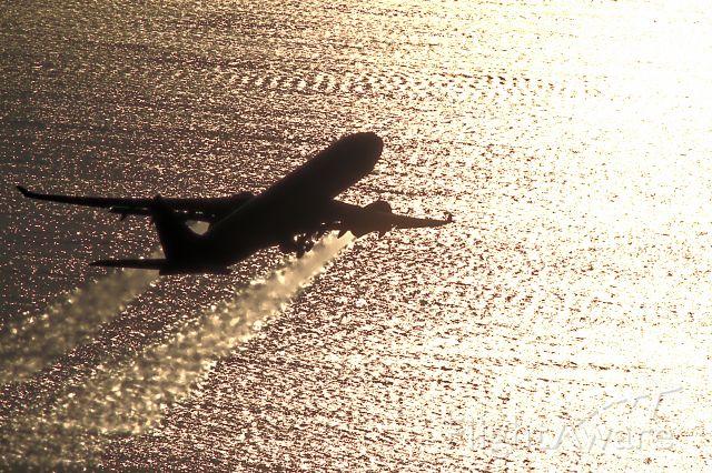 Airbus A330-300 — - Aeroflot LAX Departure